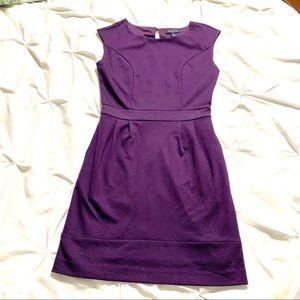 *Banana Republic* Purple Sheath Dress 0